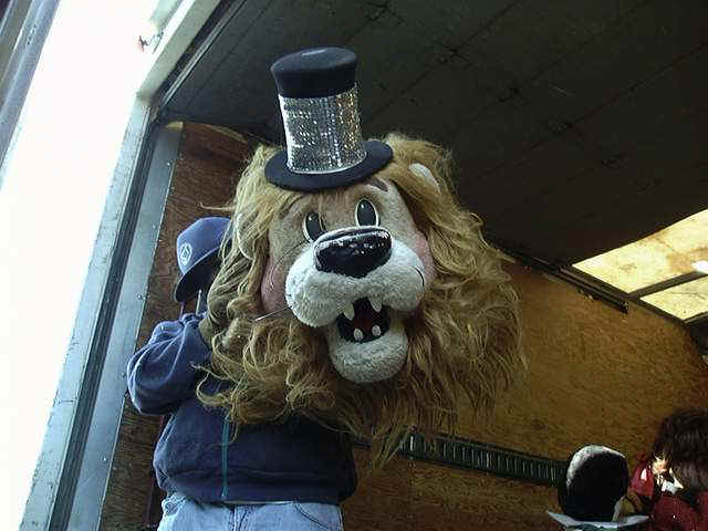 Misc. Animatronics - Photo Gallery Lioness And Lion